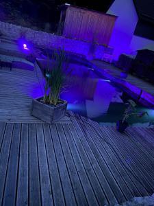 Lichttechnik_Gartenparty_Outdoorbeleuchtung